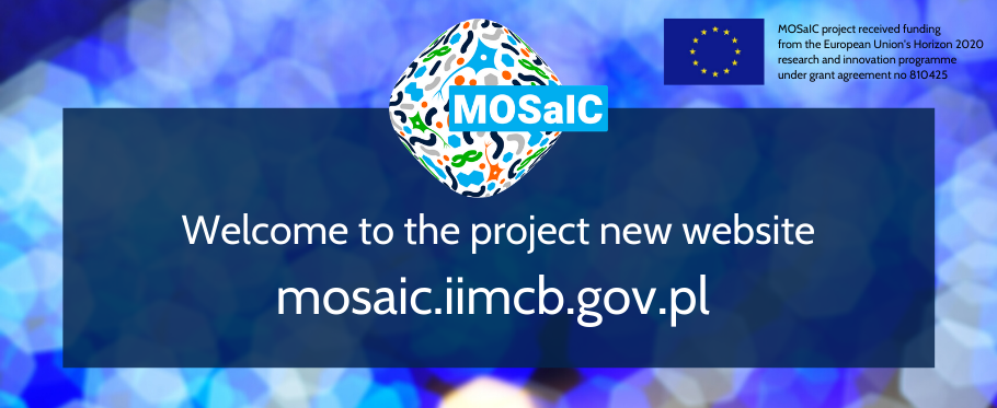 Welcome to the MOSaIC project new website