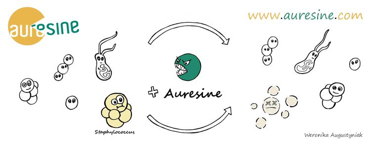 Auresine new website has been launched!